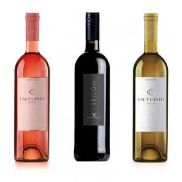 12 BOTTLES SPANISH WINE. 8 AWARD WINE O.D. TIERRA DE CASTILLA WHITE AND ROSÉ + 4 SEILON O.D. RIBERA DEL GUADIANA RED WINE.