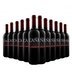 "Selection of 12 bottles ""Cañadas"" spanish wine of Tierra de Castilla. 6 red and 6 white."